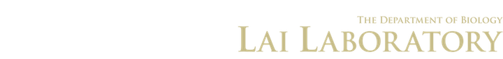 Lai Laboratory